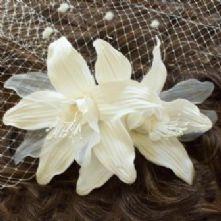 Milliner's Blossoms
